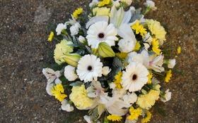 Обои цветы, фото, букет, герберы, гвоздики, альстрёмерия