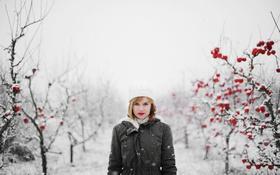 Картинка зима, девушка, снег, волосы, яблоки, капот, губы