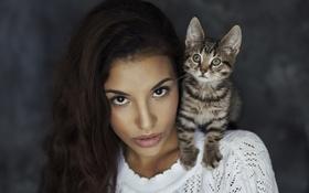 Обои смотрит, брюнетка, котенок, взгляд