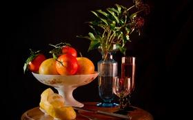 Обои еда, апельсины, цитрусы