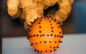 Обои зима, огни, апельсин, Новый Год, Рождество, фрукт, цитрус