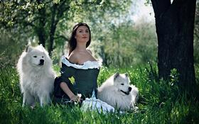 Картинка собаки, девушка, платье