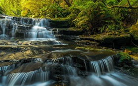 Обои Australia, waterfalls, sunlight, long exposure, Blue Mountains, Leura Cascades