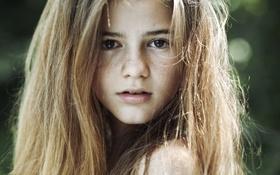 Обои волосы, ребенок, девочка