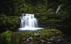 Обои зелень, вода, камни, водопад, мох, поток