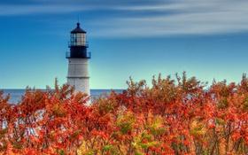 Обои море, осень, небо, листья, облака, маяк, багрянец