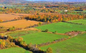 Картинка осень, трава, деревья, горы, небо, поля