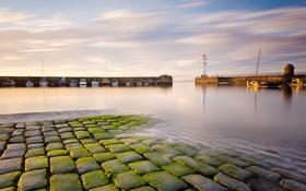 Обои море, маяк, бухта, катера, Scotland, волнорезы, Newhaven