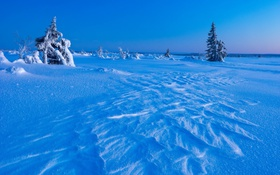 Обои холод, зима, снег