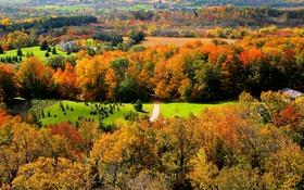 Обои лес, осень, Канада, трава, Онтарио, дом, деревья
