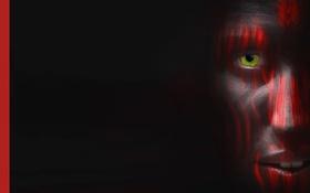 Обои глаз, лицо, краски, красная линия
