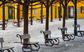 Обои снег, деревья, Прага, Чехия, аллея, скамья, остров Кампа