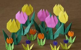 Обои цветы, бумага, фон