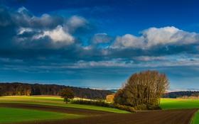 Картинка небо, солнце, облака, деревья, поля, фермы