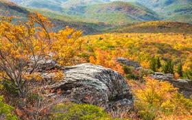 Картинка осень, деревья, горы, скалы