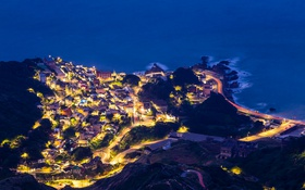 Картинка дорога, море, ночь, город, огни, дома