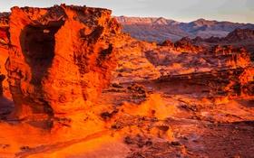Обои скалы, пустыня, зарево, США, Невада, Gold Butte