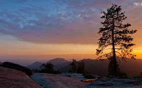 Картинка sunset, usa, beetle rock, sequoia national park