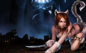 Обои кошка, девушка, нож, League of Legends, хвос, кинжалт