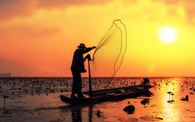 Обои ажурные, солнечный, солнце, лето, зеркало, озеро, рыбак