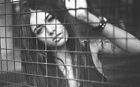 Картинка чёрно-белое, Диана Мелисон, решётка
