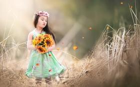 Обои лето, цветы, девочка