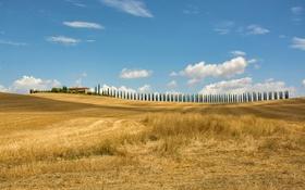 Картинка поле, осень, деревья, дом, холмы, Италия, Тоскана