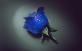 Обои капли, цветок, art, голубая роза
