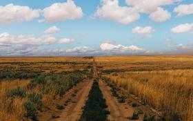 Обои облака, фермы, горизонт, небо, дорога, поля