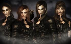 Обои девушки, броня, ворон, Dark Angels, Skyrim