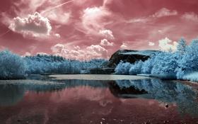 Картинка лето, пейзаж, река, цвет