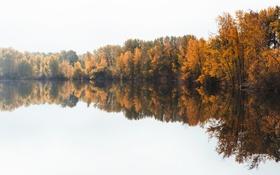 Обои осень, деревья, солнечный свет, небо, отражение, зеркало, озеро
