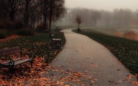 Обои осень, парк, скамья, туман