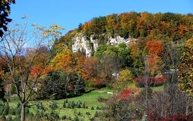 Обои осень, трава, деревья, горы, дома, склон, Канада