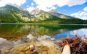Обои США, пейзаж, Grand, Teton, озеро, природа, горы