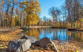 Картинка камни, пруд, осень, дорожка, листья, деревья, скамья