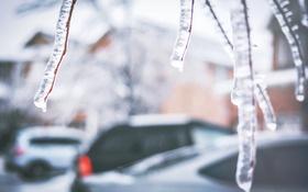 Обои лед, зима, ветки, улица