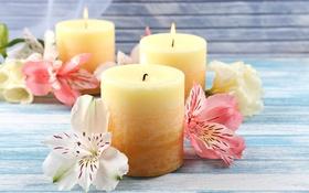 Обои цветы, свечи, лепестки