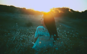 Картинка трава, девушка, закат, профиль