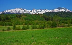 Обои горы, небо, трава, деревья, снег