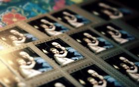 Картинка макро, праздник, марки