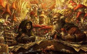 Обои девушка, грибы, книги, арт, лестница, старик, Dragon's Crown