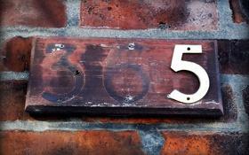Обои фон, 365, стена, номер
