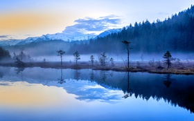 Картинка деревья, горы, туман, озеро, Италия, Ломбардия, Априка
