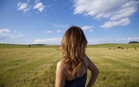 Картинка небо, горизонт, девушка, поле, облака