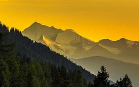 Обои лес, пейзаж, горы, небо