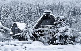 Обои зима, снег, дом, Япония, остров Хонсю, Гокаяма, Сиракава-го