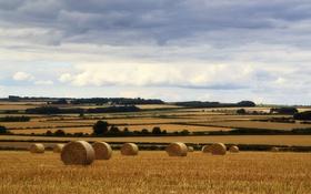 Картинка поля, дом, небо, фермы, деревья, сено, облака