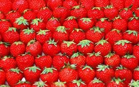 Обои ягода, клубника, красная, ряды