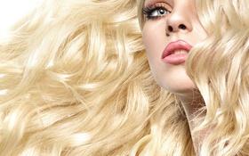 Обои волосы, модель, лицо, блондинка, кудри, взгляд, макияж